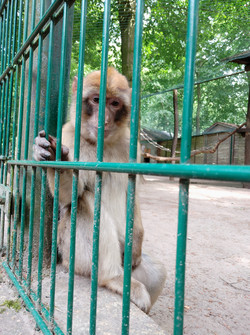 Photo taken with the front camera
