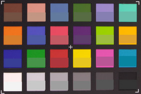 ColorChecker. Reference color in lower half of each square.