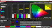 CalMAN professional color space