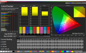 CalMAN ColorChecker sRGB (Intensive)