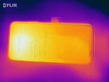 Thermal image (front)