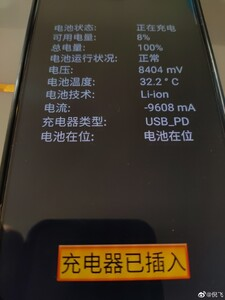 Battery info (Source: Weibo)