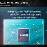 Stoney Ridge là chipset 15W thế hệ đầu tiên của AMD.  (Nguồn: AMD)
