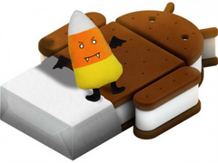 Notion Ink promises Icecream Sandwich update by October