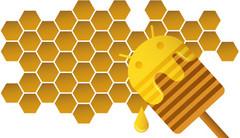 Google Android 3.0 Honeycomb debuts at CES 2011