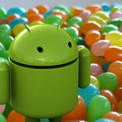 Asus to be one of the first to adopt Jelly Bean