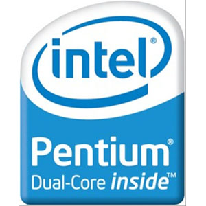 Intel Pentium Dual Core SU4100 Notebook Processor ...